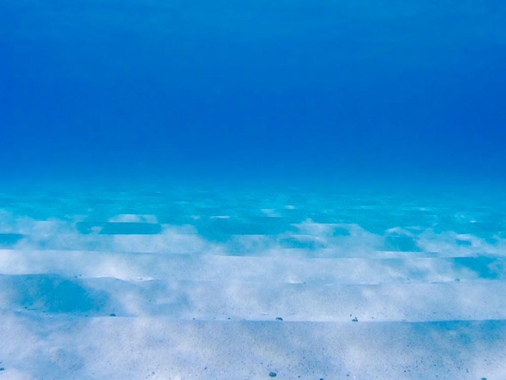 土盛海岸の浅瀬は綺麗な砂地