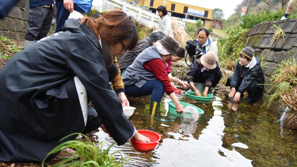 奄美国直集落の体験ツアー:アオサを洗う