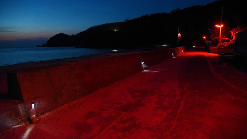 大和村の赤い街灯が光るスモモロード(国直海岸)