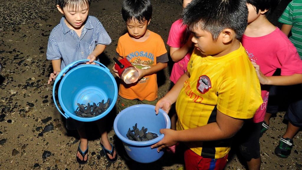 子亀を助ける子供たち(大和村)