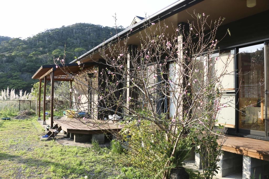 「奄美のトラさん」こと花井恒三さんの自宅の庭