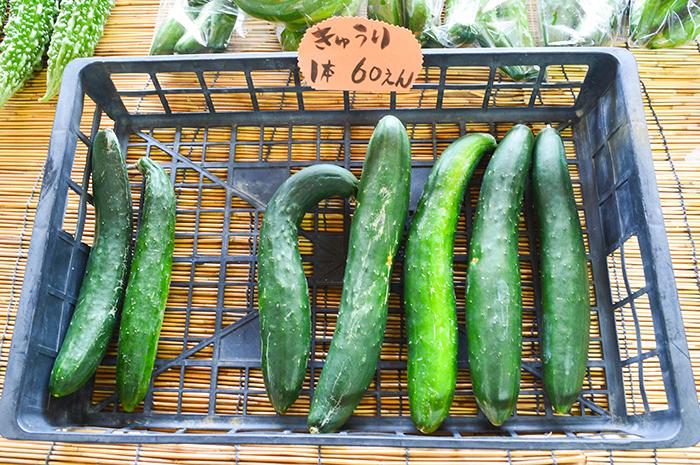 住用サン奄美、地場産の野菜