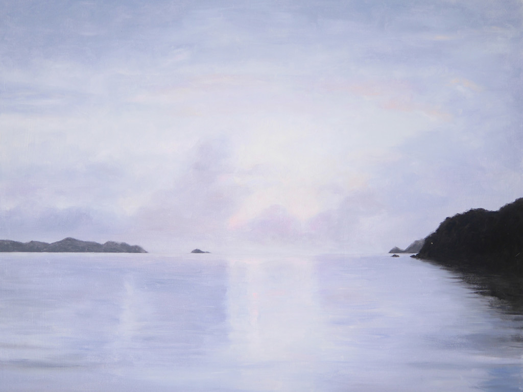 加計呂麻島、海岸の風景