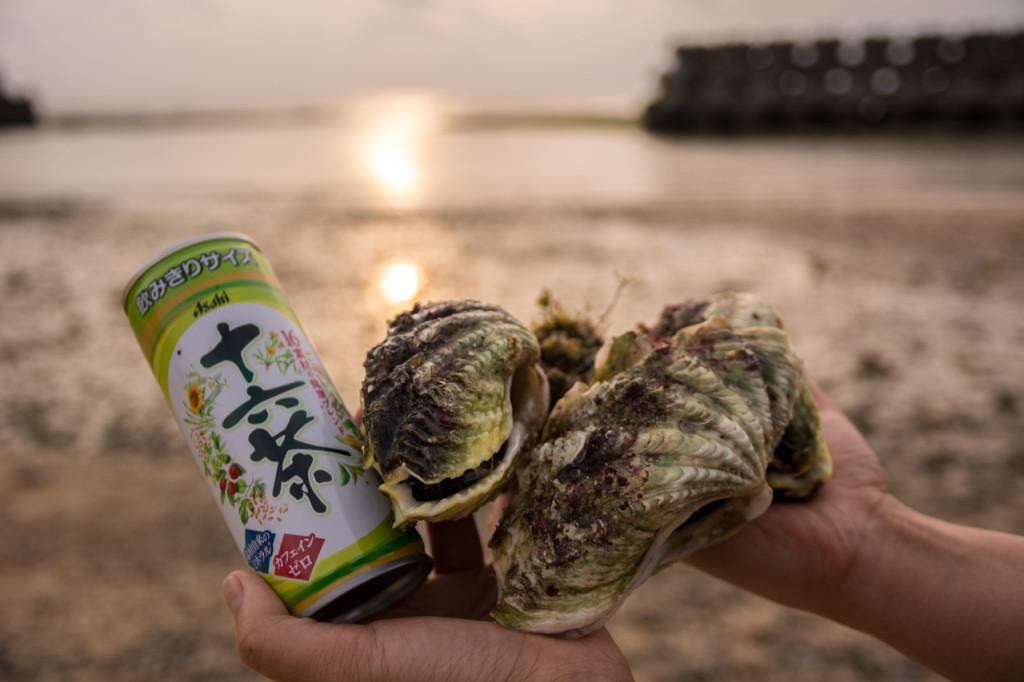 奄美、佐仁集落おばぁにもらったシャコ貝とお茶