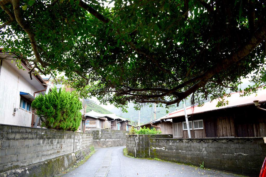 龍郷町円集落の風景