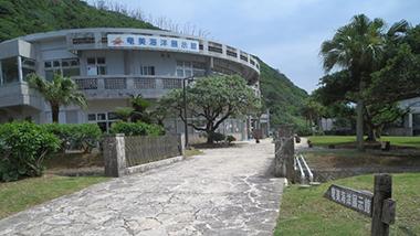 さあ、奄美の海へ、探検の始まりです。奄美市名瀬の「奄美海洋展示館」