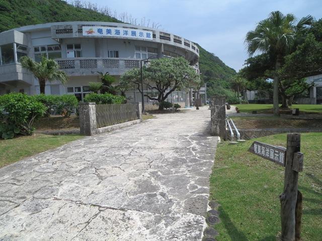 大浜にある奄美海洋展示館の外観