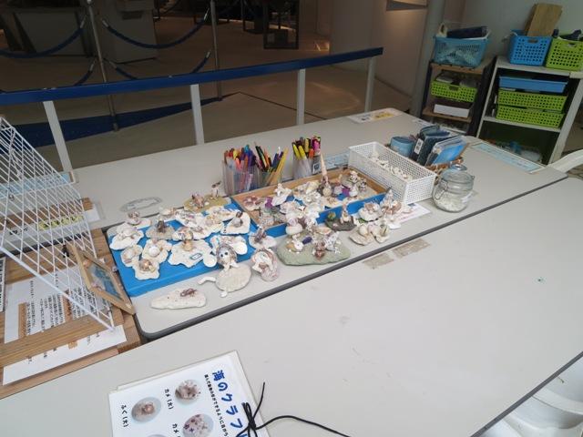 奄美海洋展示館の体験コーナー
