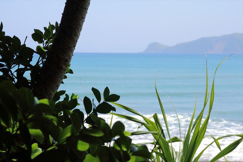 奄美の晴れた日の海岸、アダンと海