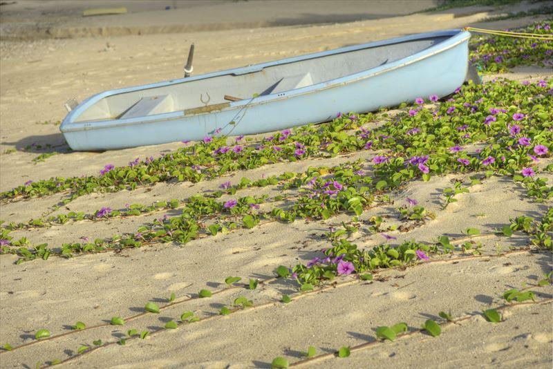 奄美の用安海岸の砂浜とボート