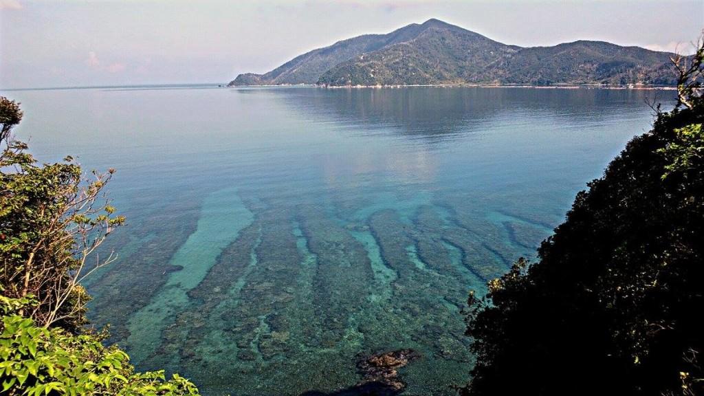 宇検村枝手久島と透き通った海