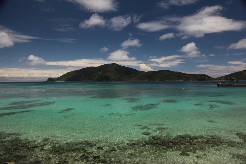 枝手久島と透明度の高い海