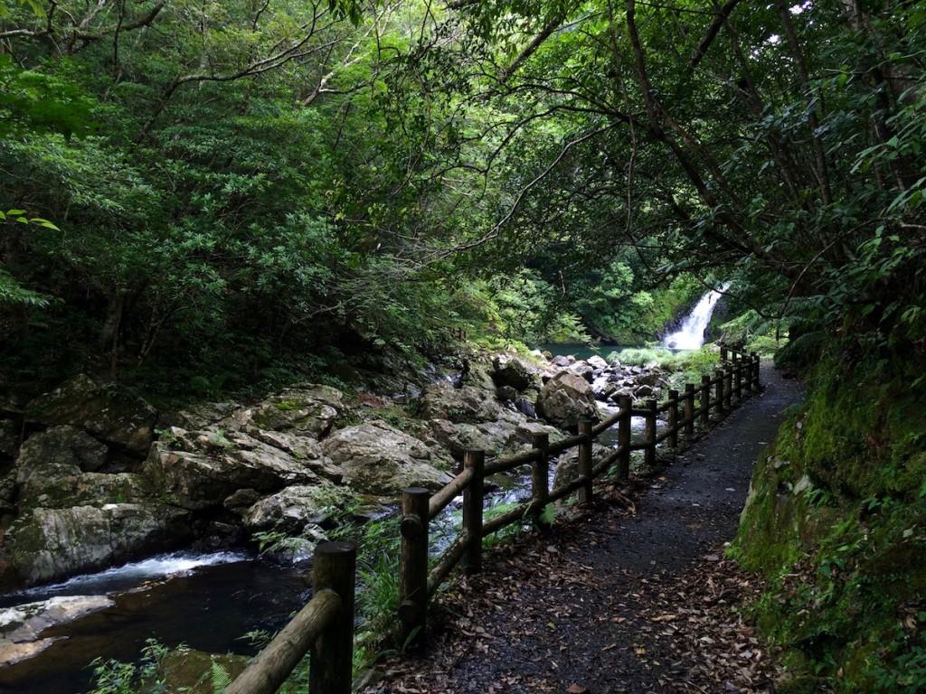 駐車場から滝までは徒歩5分程度。滝までの遊歩道も川沿いで気持ちが良い