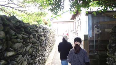 【奄美体験型観光】勝浦&西古見 集落歩きバスツアー 鮮やかな夕陽も忘れずに!