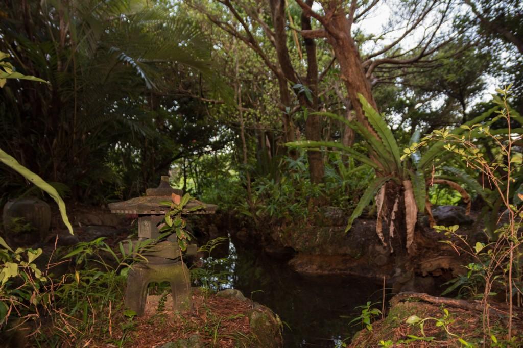 奄美笠利市の薗家、文化財の庭