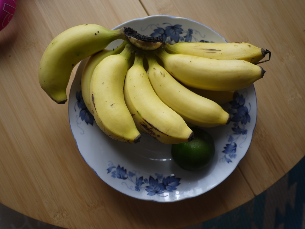 奄美大島の島バナナ