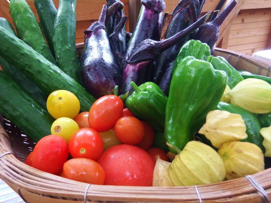 瀬戸内町の阿木名集落にある「チルチルCafe」で使用される新鮮野菜