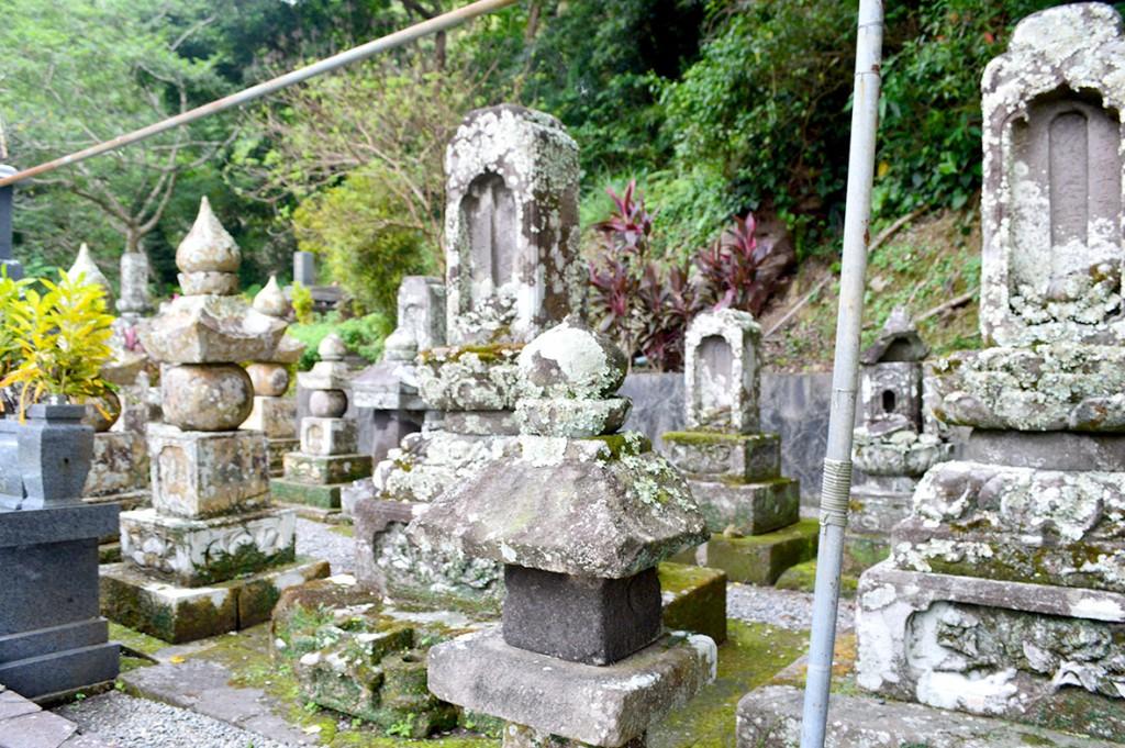 宇検村集落奥の高台に設置されたダンナ墓群。