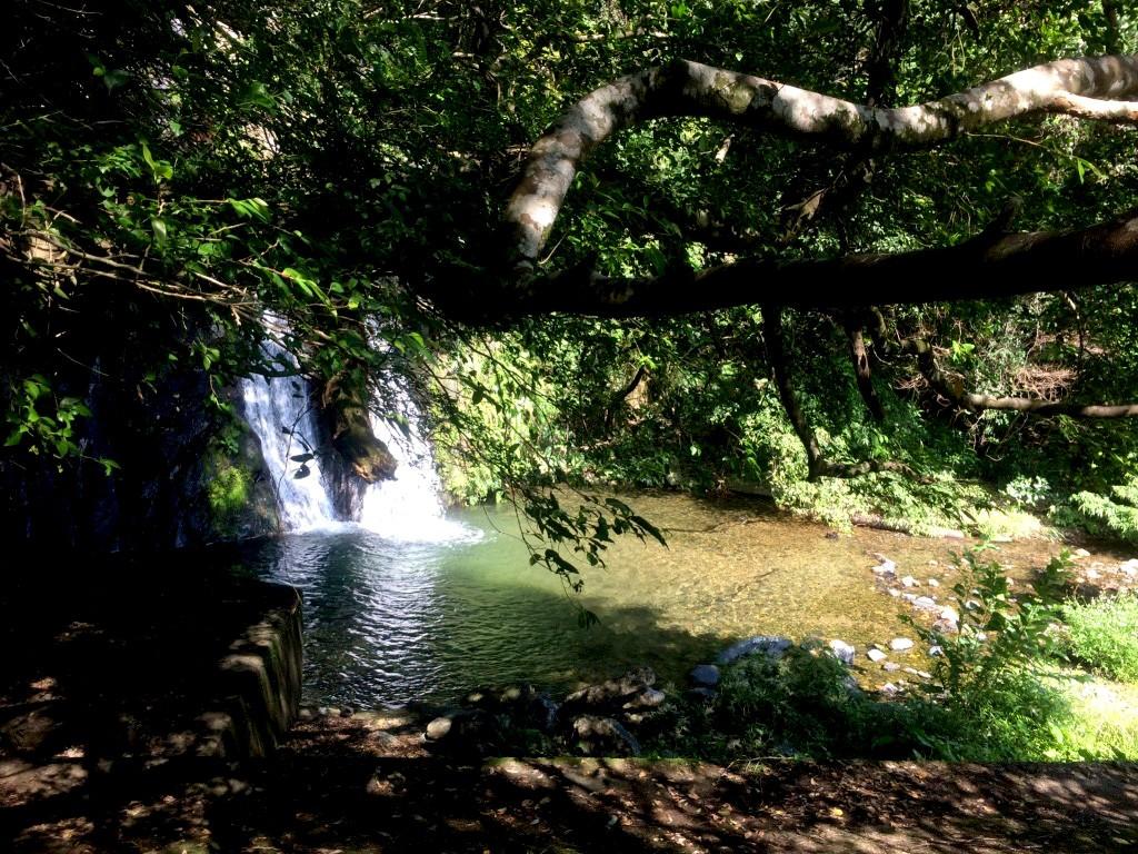 宇検村湯湾:アランガチの滝