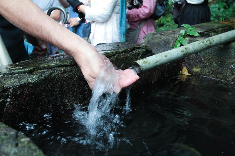 奄美大和村サンセットバスツアー湧き水(若水)