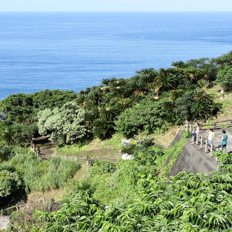 奄美フォレストポリス展望台からの眺め