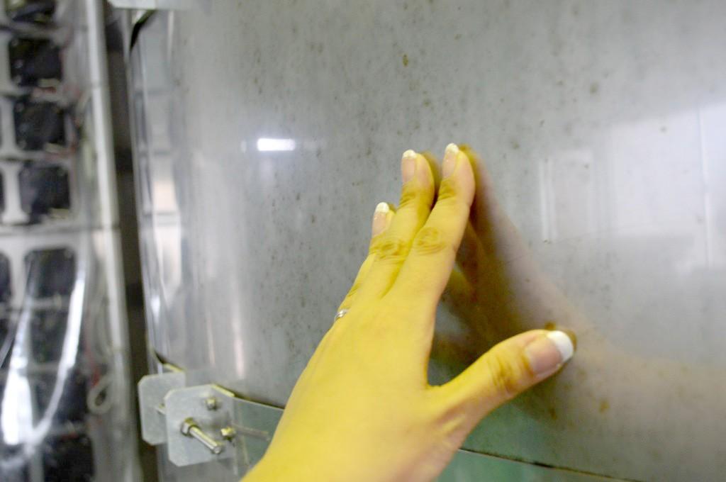 奄美大島開運酒造:黒糖焼酎の音響熟成