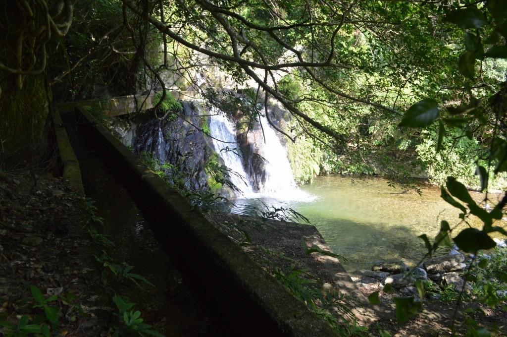 宇検村湯湾:アランガチの滝の木陰