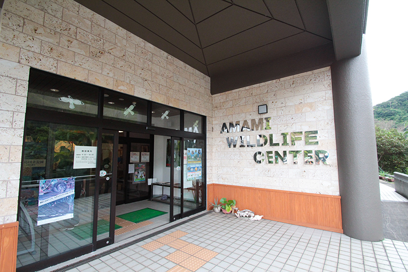 奄美大和村サンセットバスツアー野生生物保護センター外観