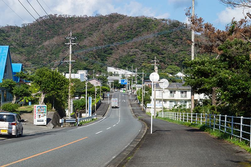 奄美の道路