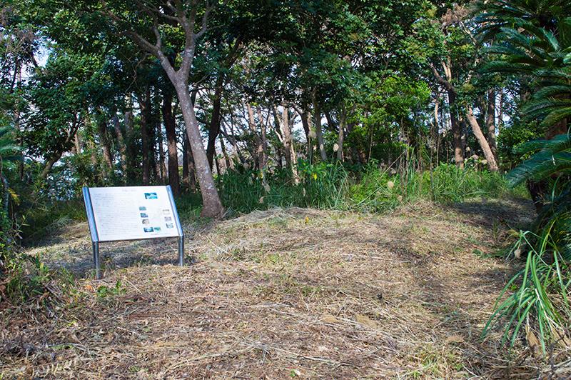 赤木名城跡の平場(曲輪)