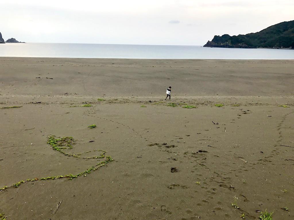 瀬戸内町嘉徳海岸の砂浜