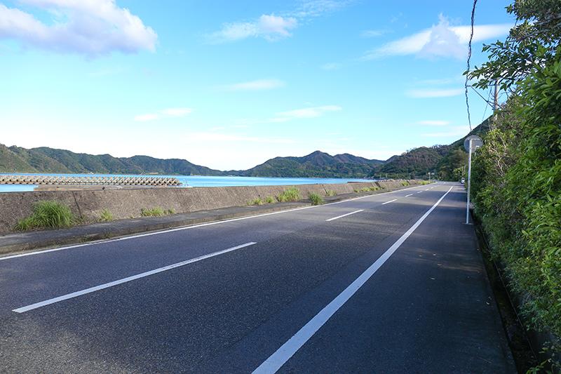 沿岸沿いの道路