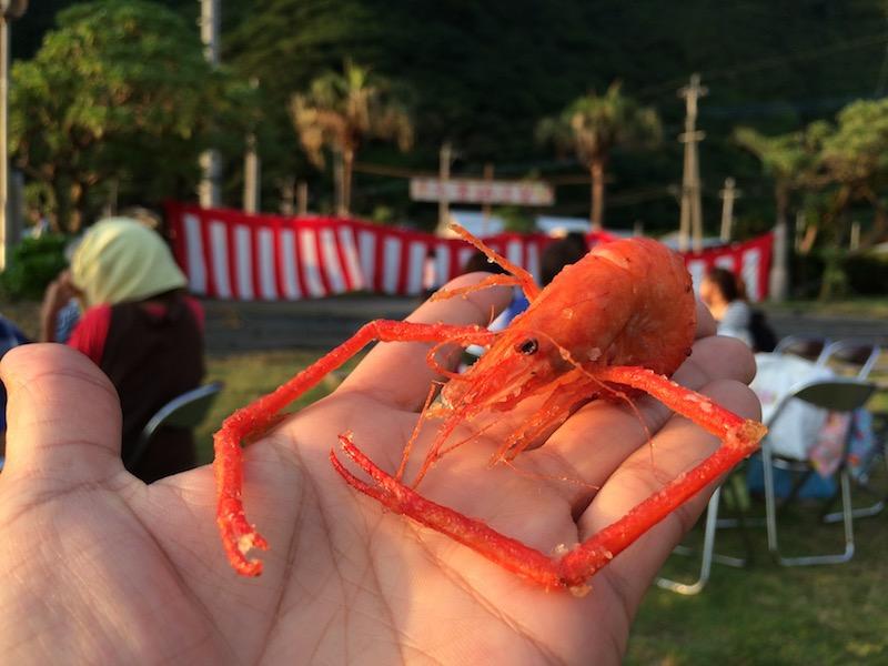 夏祭りで食べたタンガの唐揚げ特大サイズです。