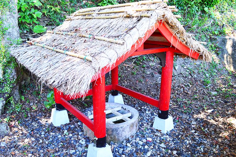 奄美の愛加那の泉ことイジョンゴ