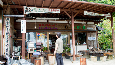 西郷隆盛ゆかりの地をめぐる奄美大島の旅Vol.2〜西郷松跡地〜
