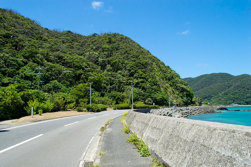 奄美龍郷:晴れた日の海