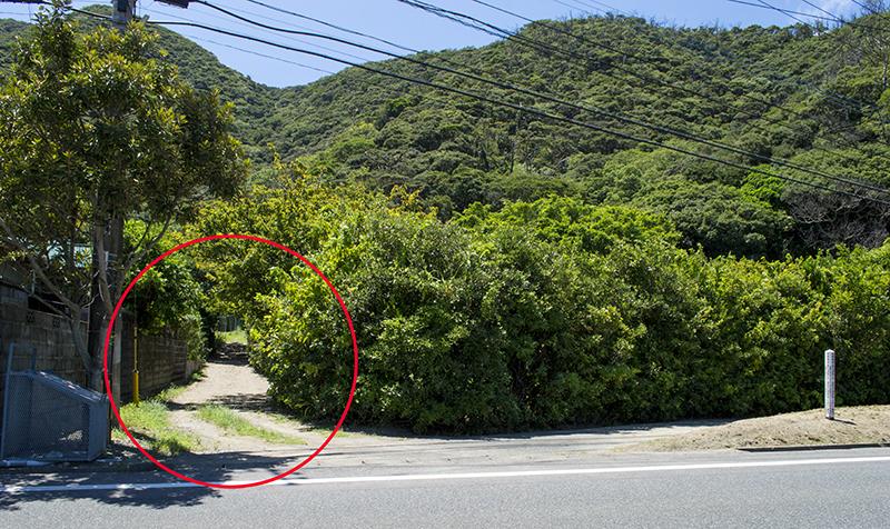奄美龍郷:西郷隆盛(菊池源吾)の2度目の潜居地までの小道