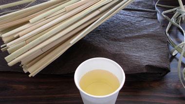 「マコモ茶作り体験」が引き出すマコモ栽培と秋名集落の魅力!