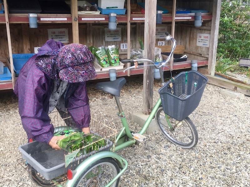 ほうれん草を持ってきた生産者。葉野菜が高い時期に、驚きの100円です。