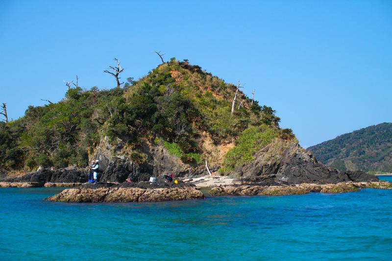 宇検村の枝手久島