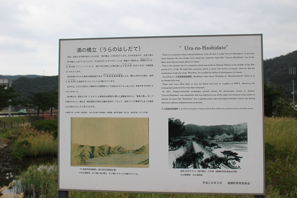 龍郷町にある浦の橋立の看板