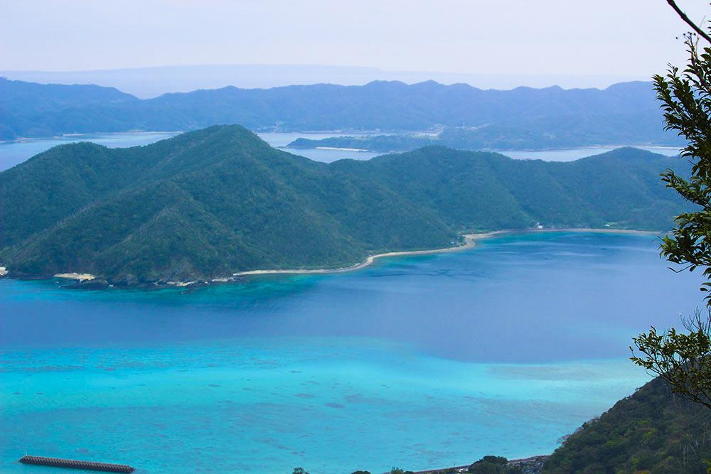奄美自然観察の森の風景の写真4_9