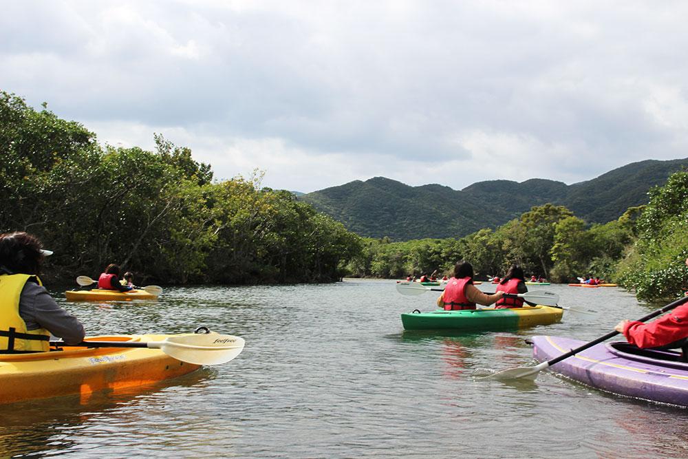 奄美大島マングローブ内をカヌーで楽しむお客さんたち
