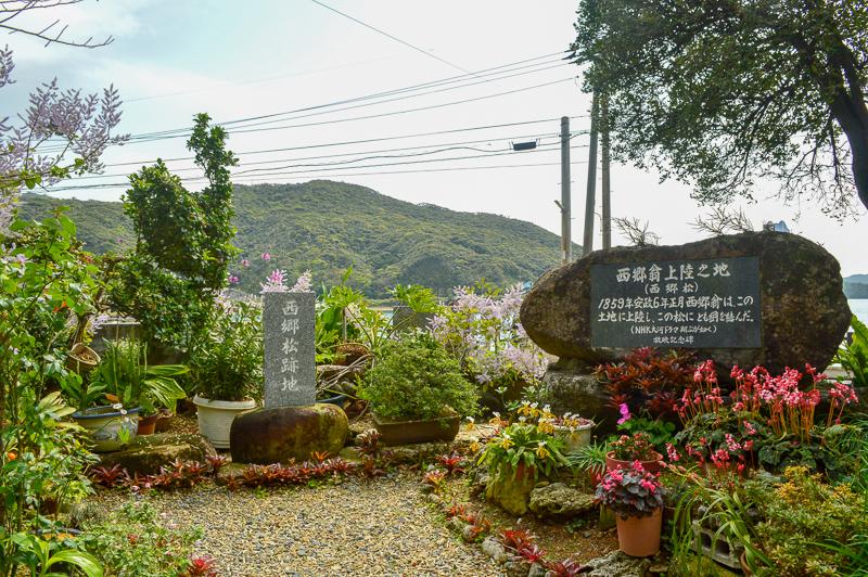 奄美龍郷町西郷松の跡地
