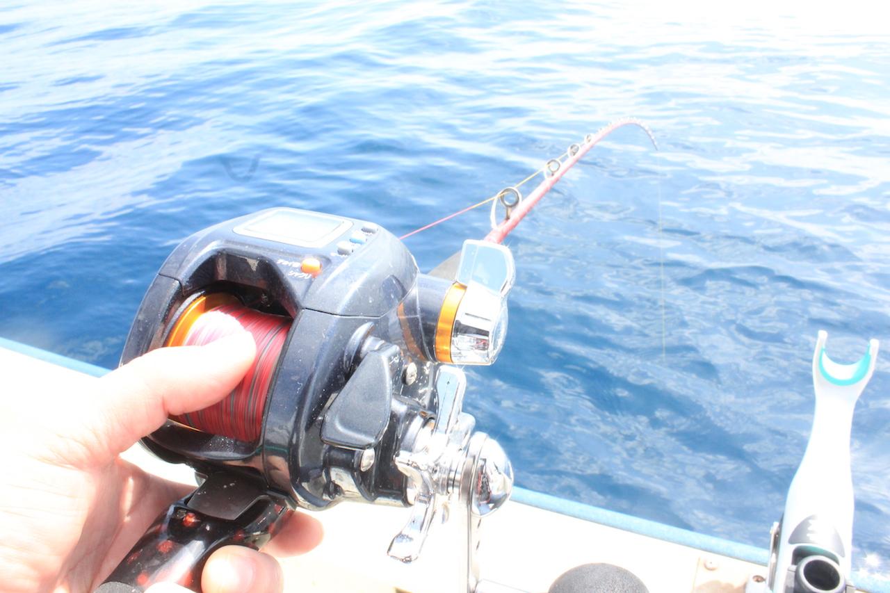 瀬戸内の海で魚釣り