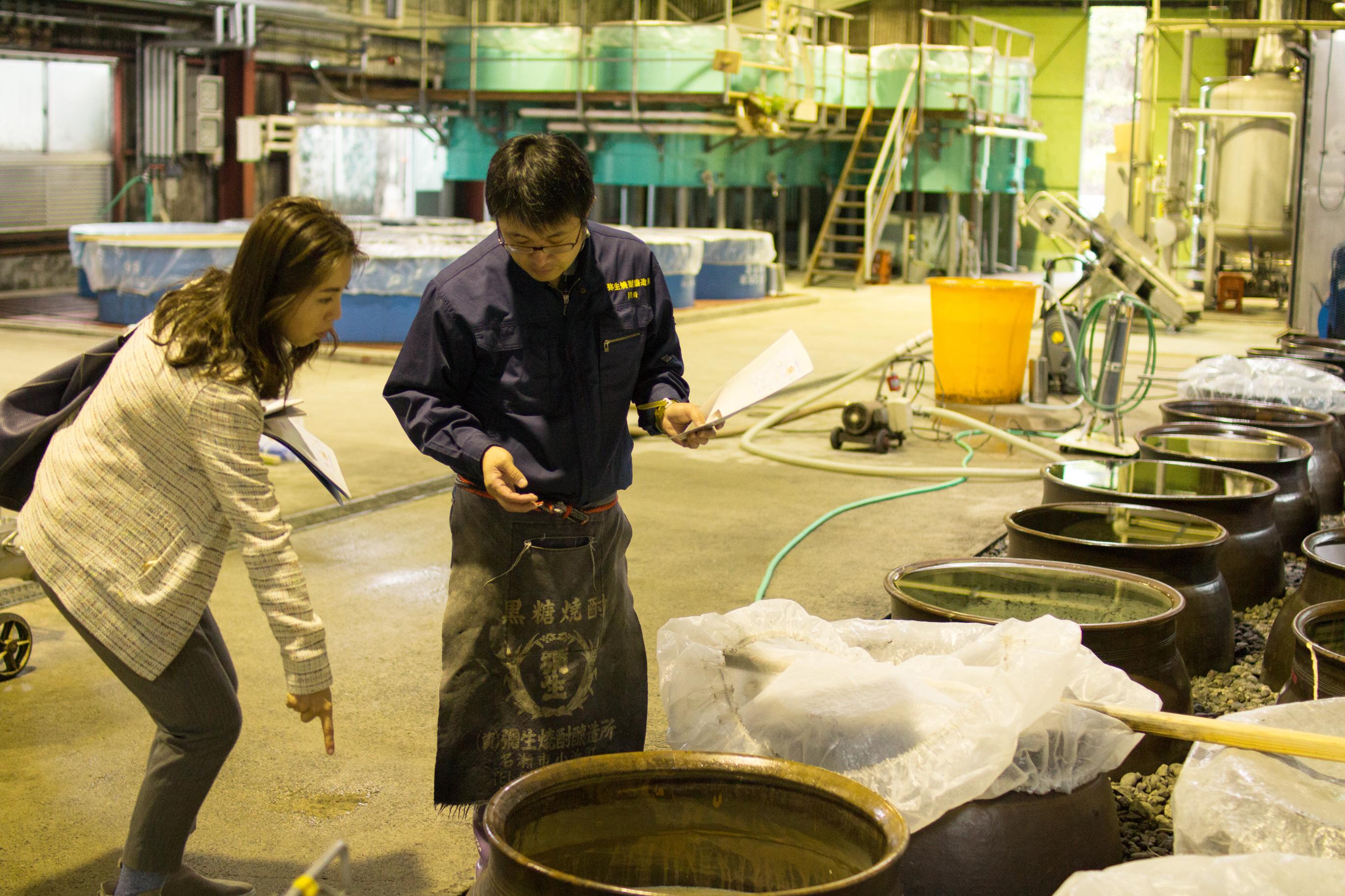 弥生焼酎醸造所の若旦那川崎さんに取材
