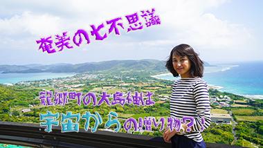 【奄美の七不思議その5】龍郷町の大島紬は遥か昔の宇宙からの贈り物?!