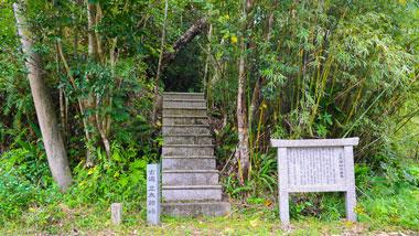 【奄美×歩け歩けのススメ】奄美群島をつなぐ自然歩道「奄美トレイル」を体験