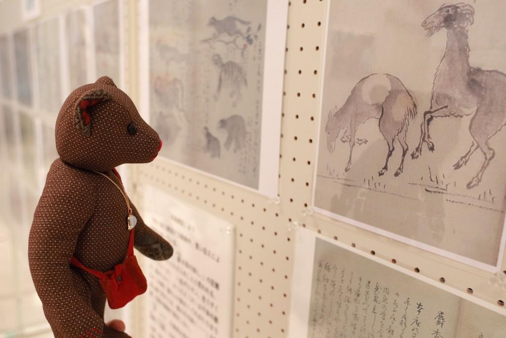 奄美博物館:南島雑話の展示
