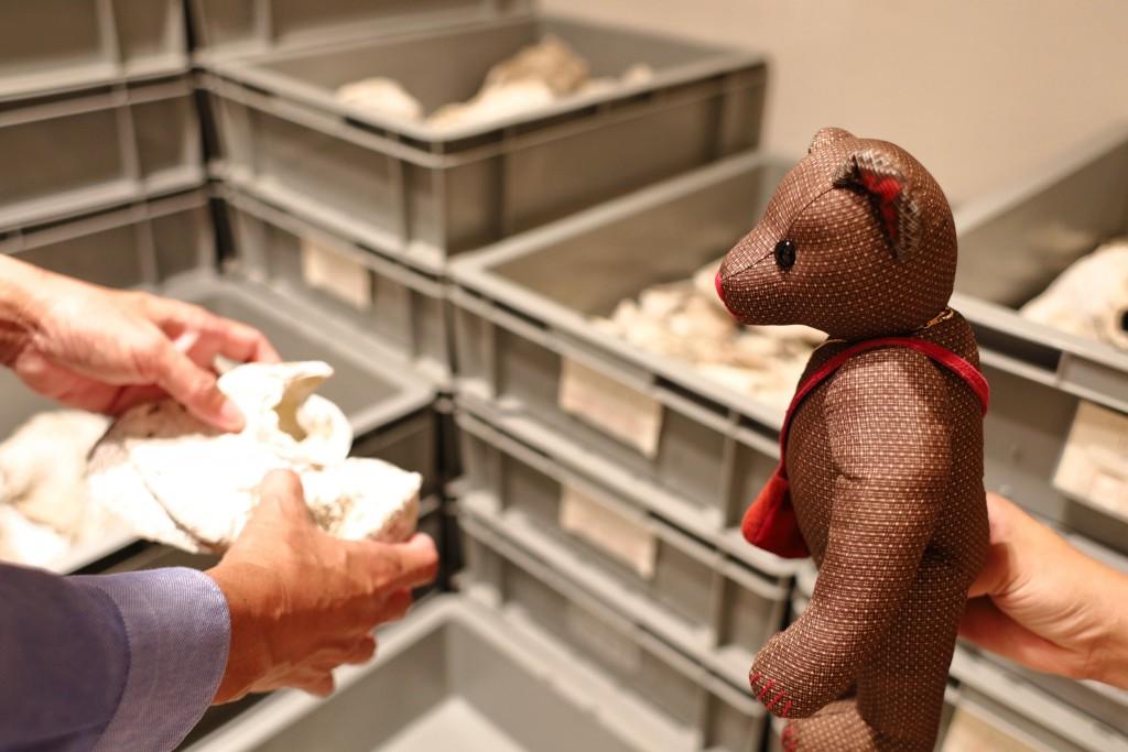 奄美博物館:小湊フワガネク遺跡の出土品とみっけ